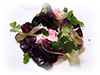 Cabbage salad, raspberry cream