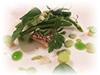 Ricciola con tiepida composta di primizie dal nostro orto, panissa e marò di fave